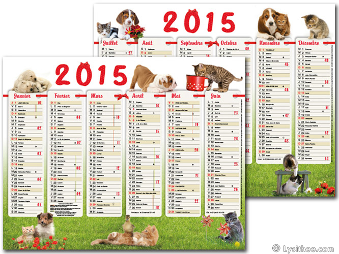 Calendrier Chiots & Chatons de Campagne