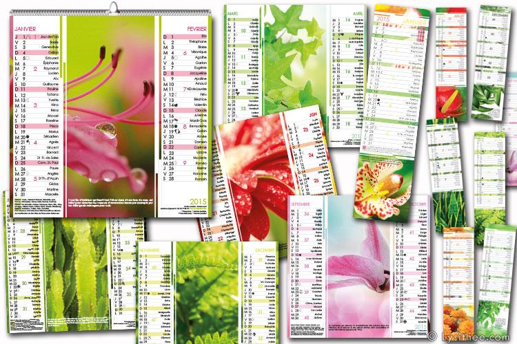 Calendrier Plantes Dépolluantes