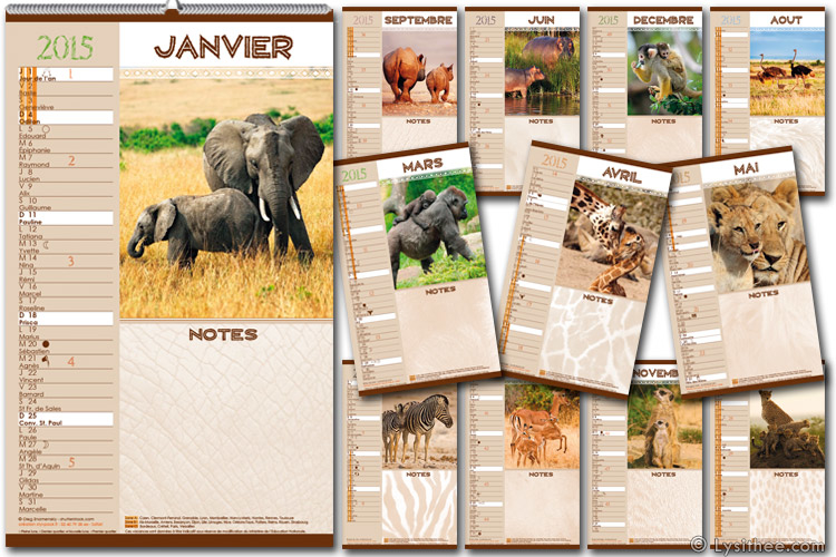 Calendrier Safari