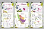 Cartes des vignobles de France