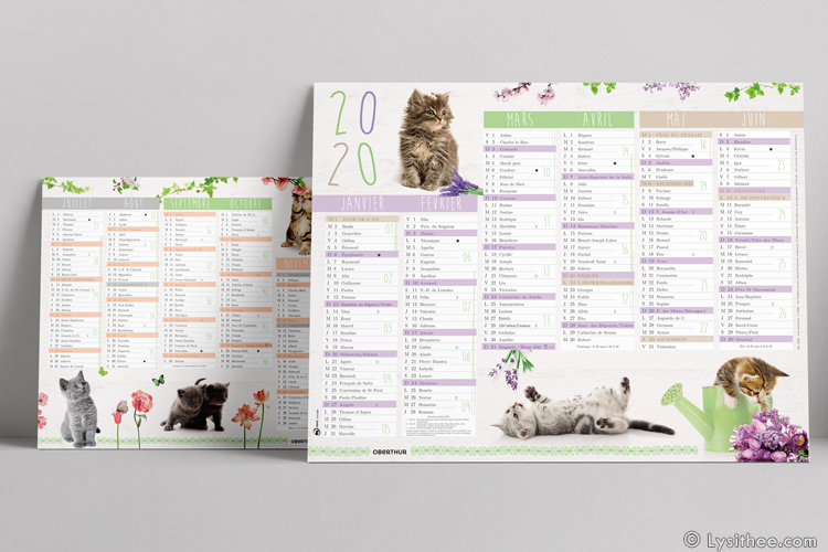 Calendriers Chatons & Fleurs