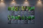 Information herbes aromatiques Primeur